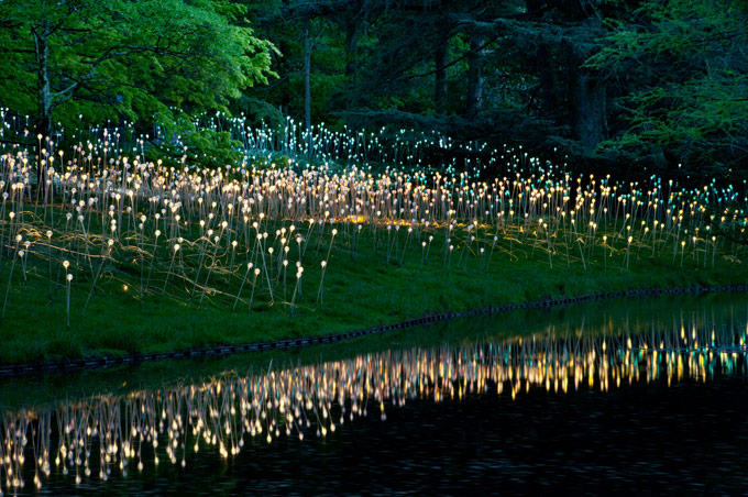Where You'd Rather Be: Feel-Good Art - Bruce Munro field of light